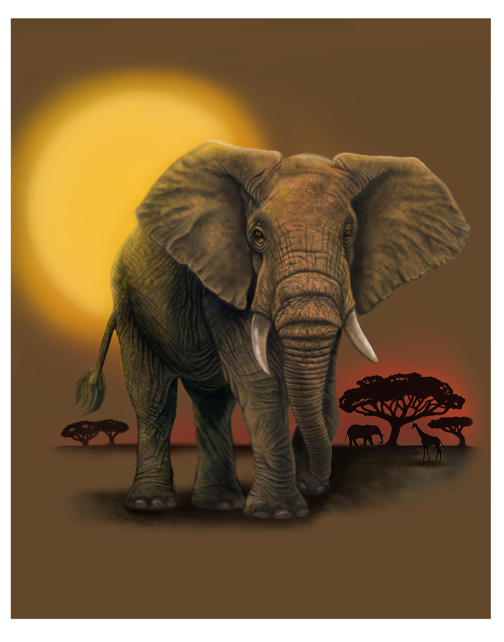 elephant 11x14.jpg