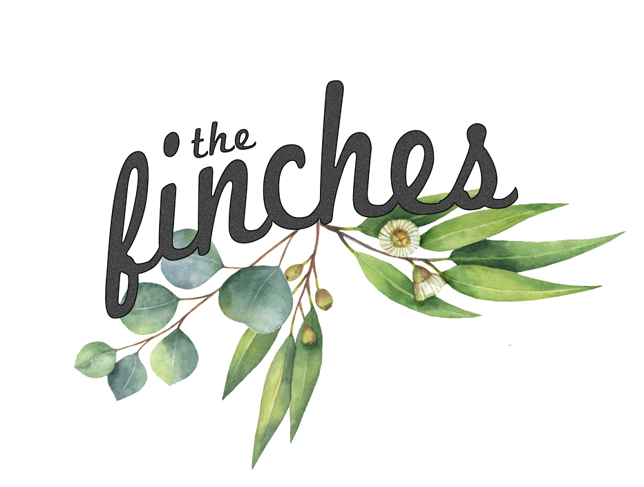 The Finches -  Toowoomba Wedding Photographers - Toowoomba Photographers