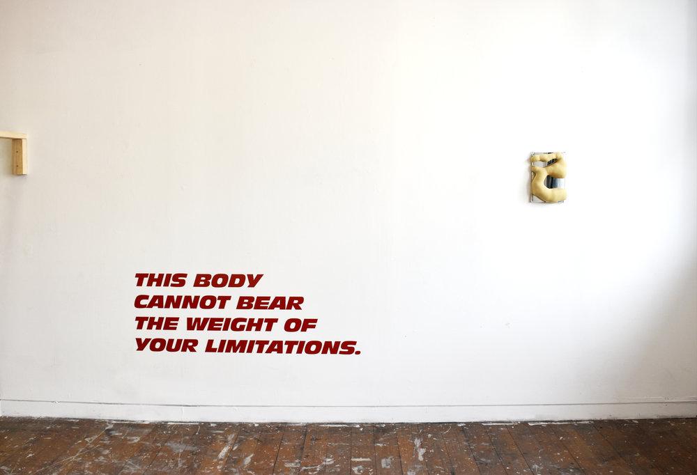 Strap On , 2017, mixed media installation, Zamara Robison