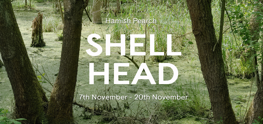 Shell Head Web banner