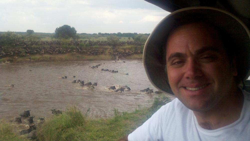 Wildebeest crossing the Mara River... Crocks below.jpg