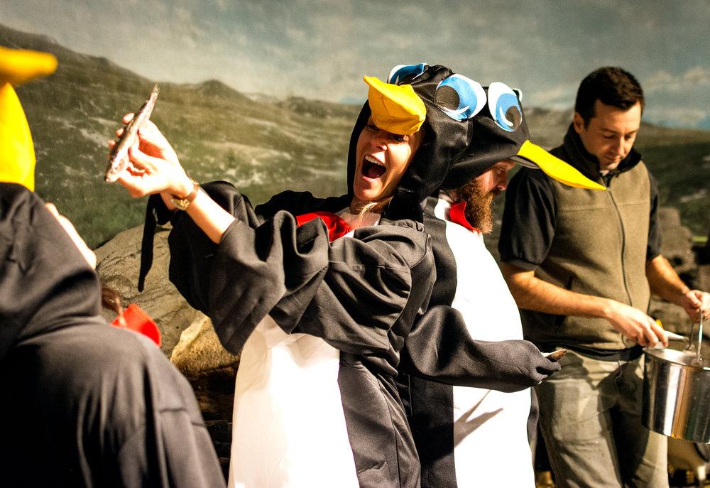 Zoo Penguin-5.jpg