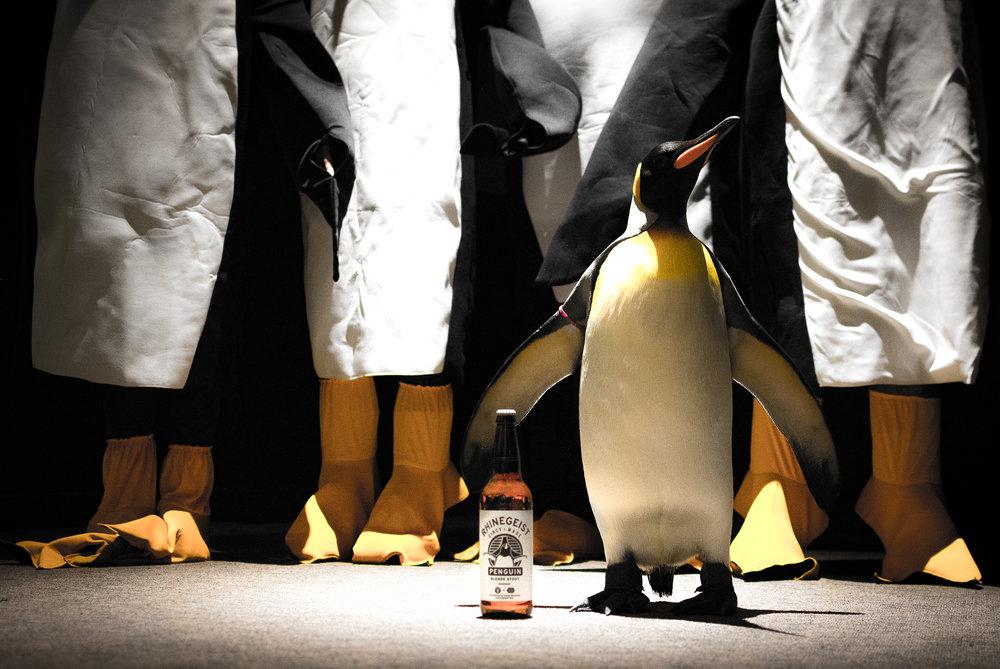 Zoo Penguin-14.jpg