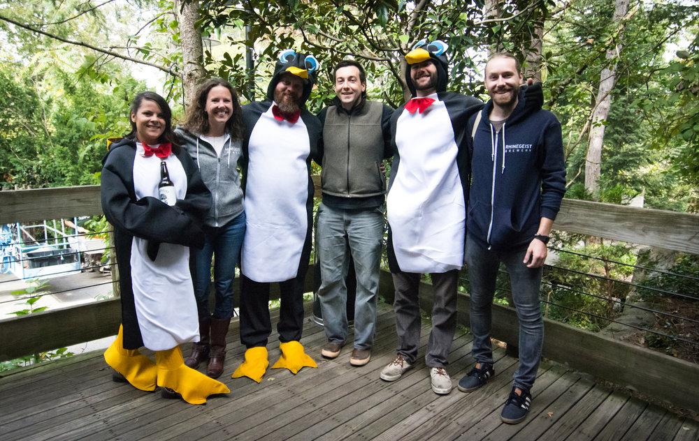 Zoo Penguin-15 (1).jpg