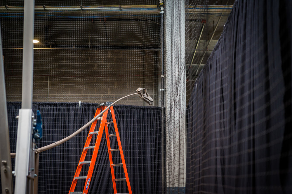 dinoconstuction_050918-29.jpg