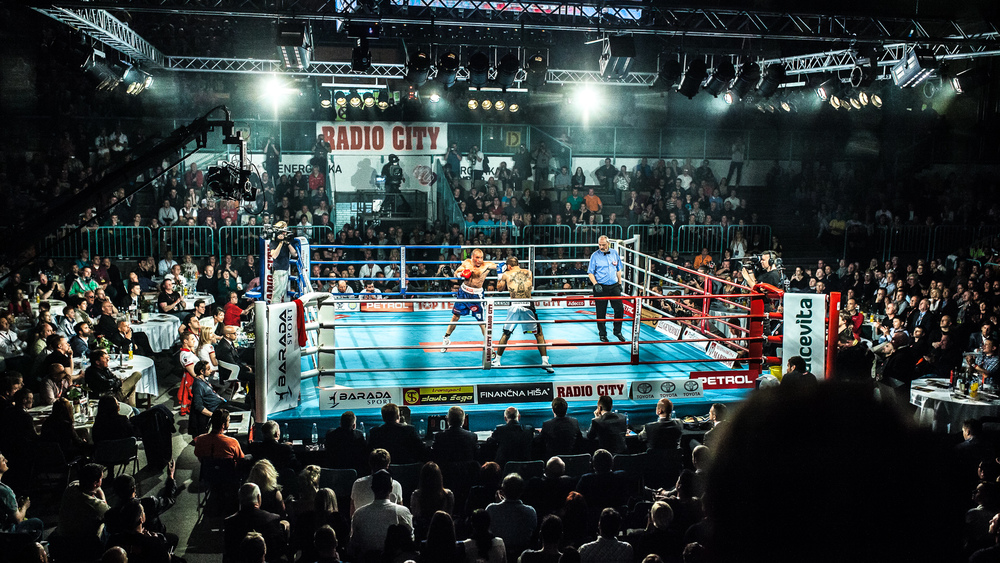 Dejan Zavec boxing against Sasha Yengoyan in Maribor, Slovenia for the WBF World Champion title in the superwelterweight category.