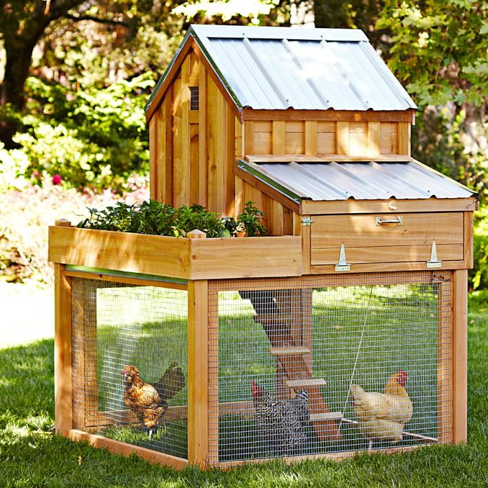 Cedar Chicken Coop.jpg