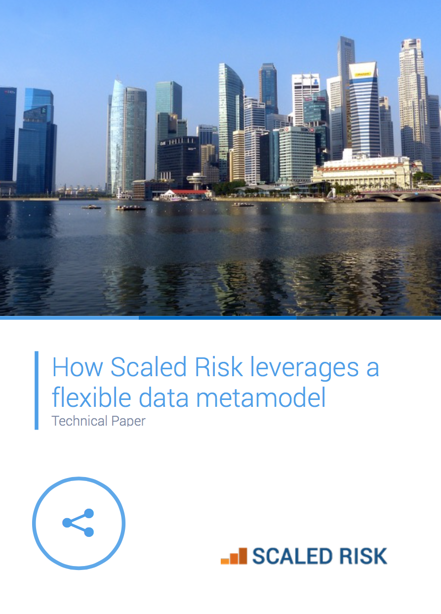 TECHNICAL PAPER: How Scaled Risk leverages a flexible metamodel