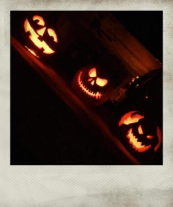 pumpkins_instant.jpg