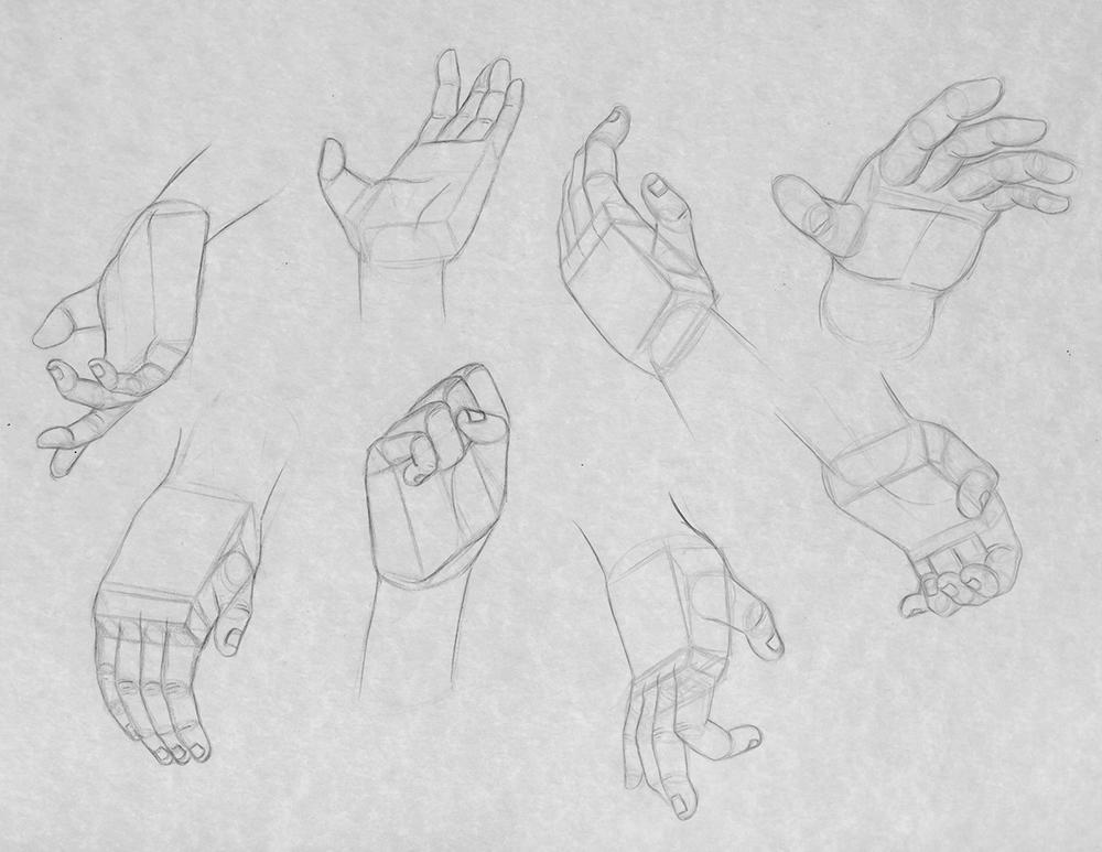 white_hand_poses.jpg
