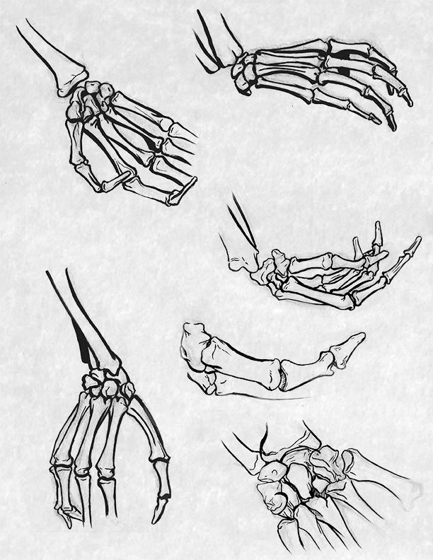 hands_and_feet.jpg