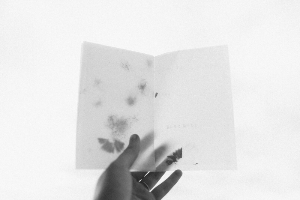 Zine No. 2: Every Little Bit December 2015