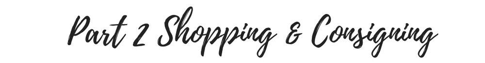 Shopping_consigning_Allie_Brandwein_image_wardrobe_consultant_virtual_stylist_nyc (11).jpg