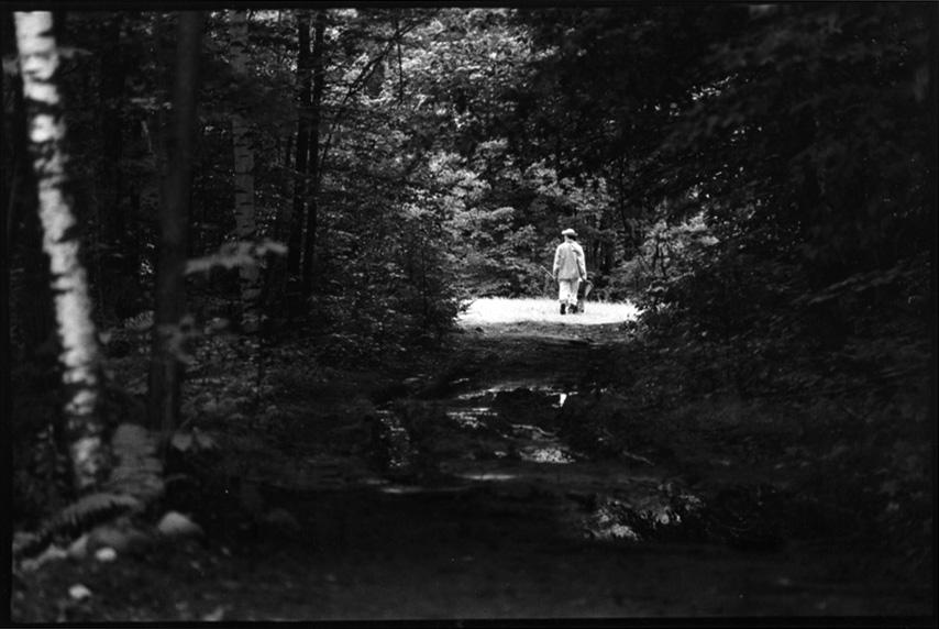 Upper field, 1988