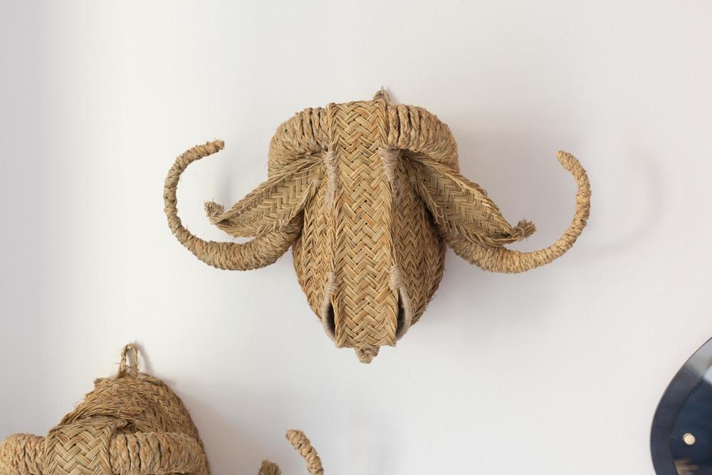TROFEOS ECOLÓGICOS  Cabezas de animales trabajadas de forma artesanal.