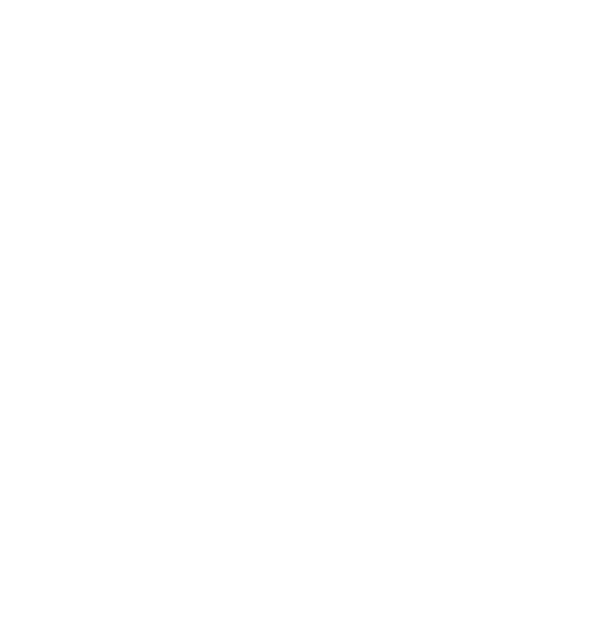 Gappa Security Solutions