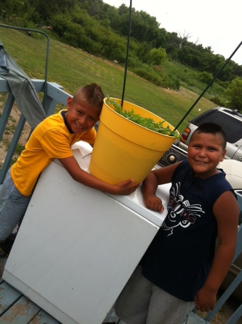 Shaun and Anthony with their tomatoes!