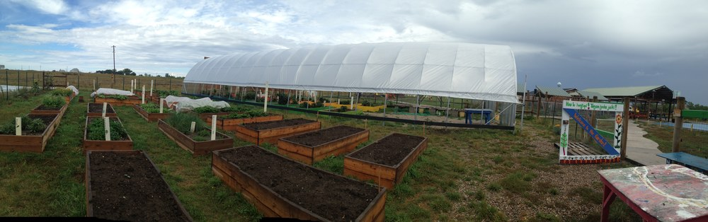 Increased production in the garden with new raised beds and enclosing the high tunnel!