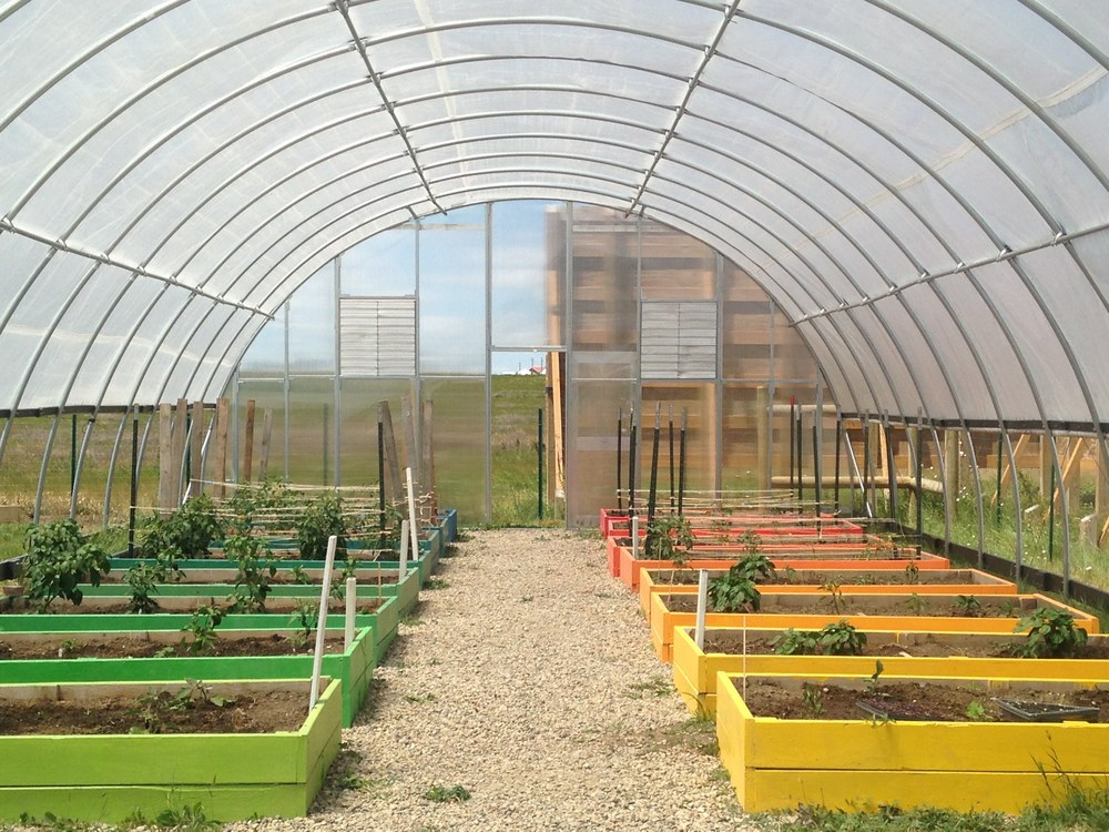 Working toward year-round growing with new end wall enclosures!