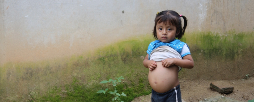 The need: During our first visits to the regions of southern Oaxaca, we saw signs of widespread intestinal worm infection - distended abdomens, malnutrition, and lethargy.