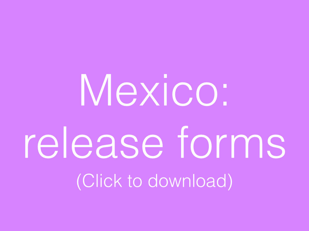 Mexico Resources Buttons.003.jpg