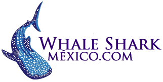 Whale Shark Mexico Logo.png