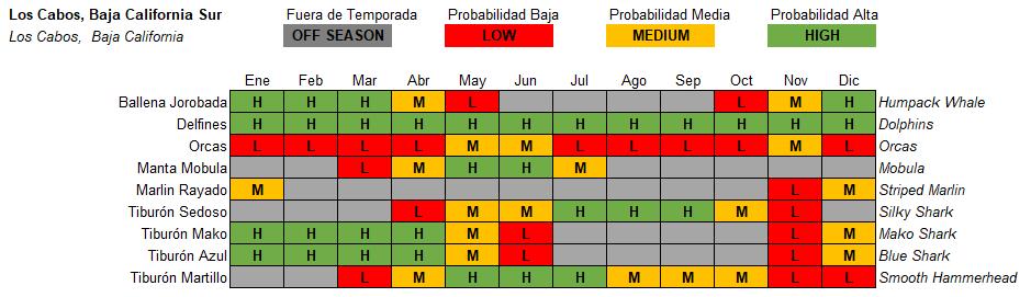 Los Cabos Pelagic Life Tabla Especies Temporada Season.PNG