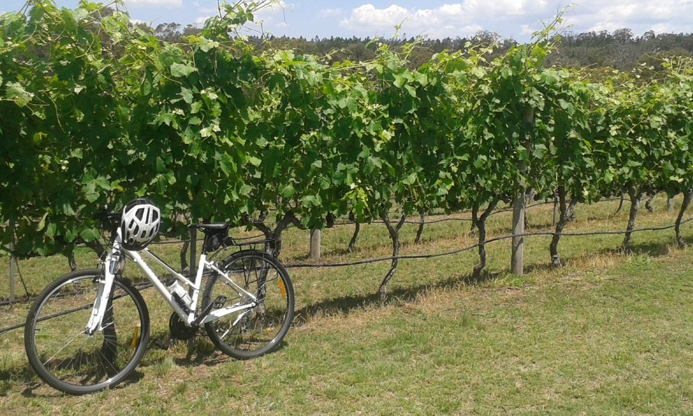 Cycle and Stars - Your wine and wheels weekend getaway    Two days of cycling on the Granite Belt - 30kms day 1 and 35kms day 2. $399 per person.