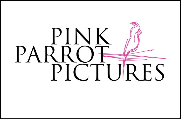 Pink Parrot Pictures