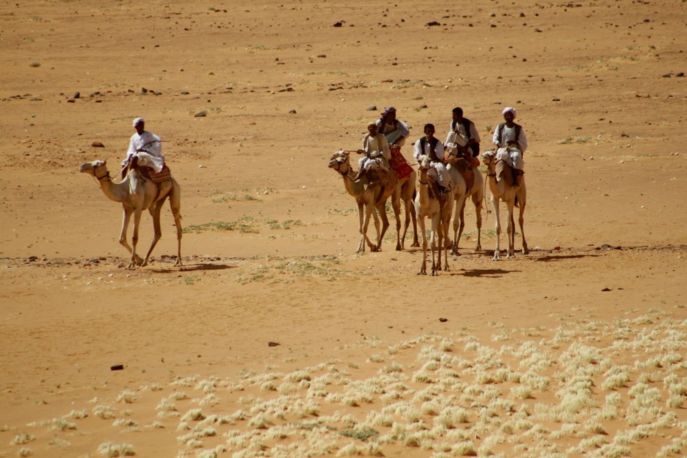 Camel Riders in Northeastern Africa
