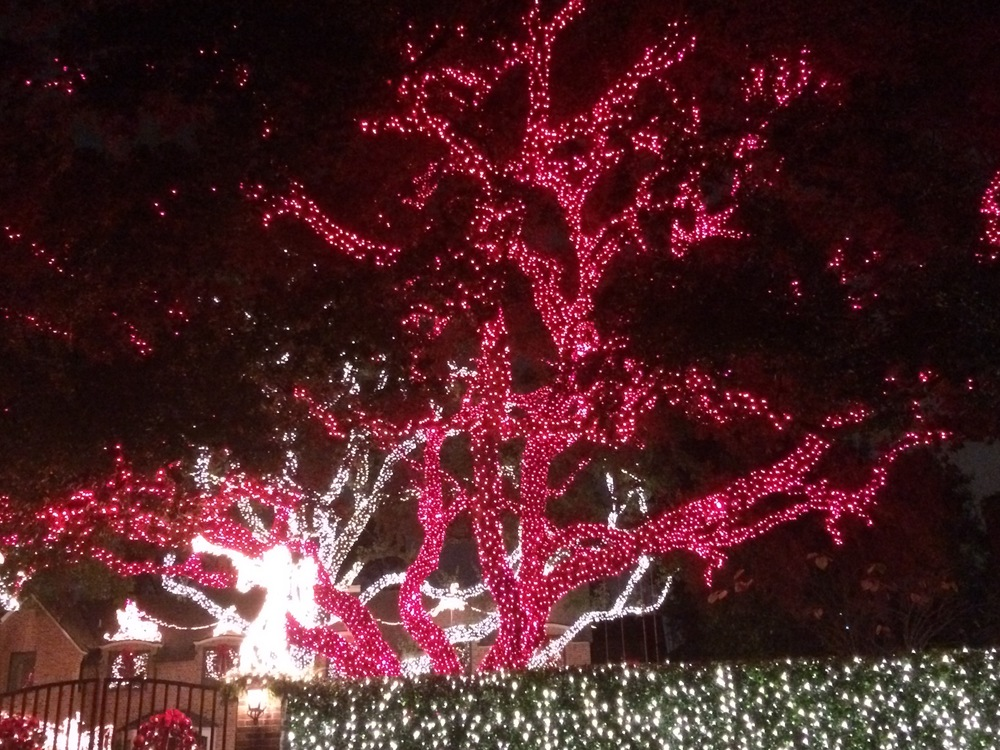 Holiday Lights in Houston. They look remarkably like vessels!