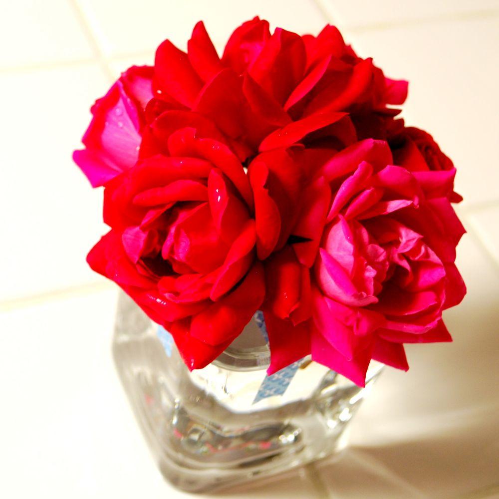 flowerarr4