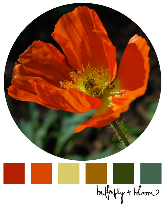colorinspiration,-no2