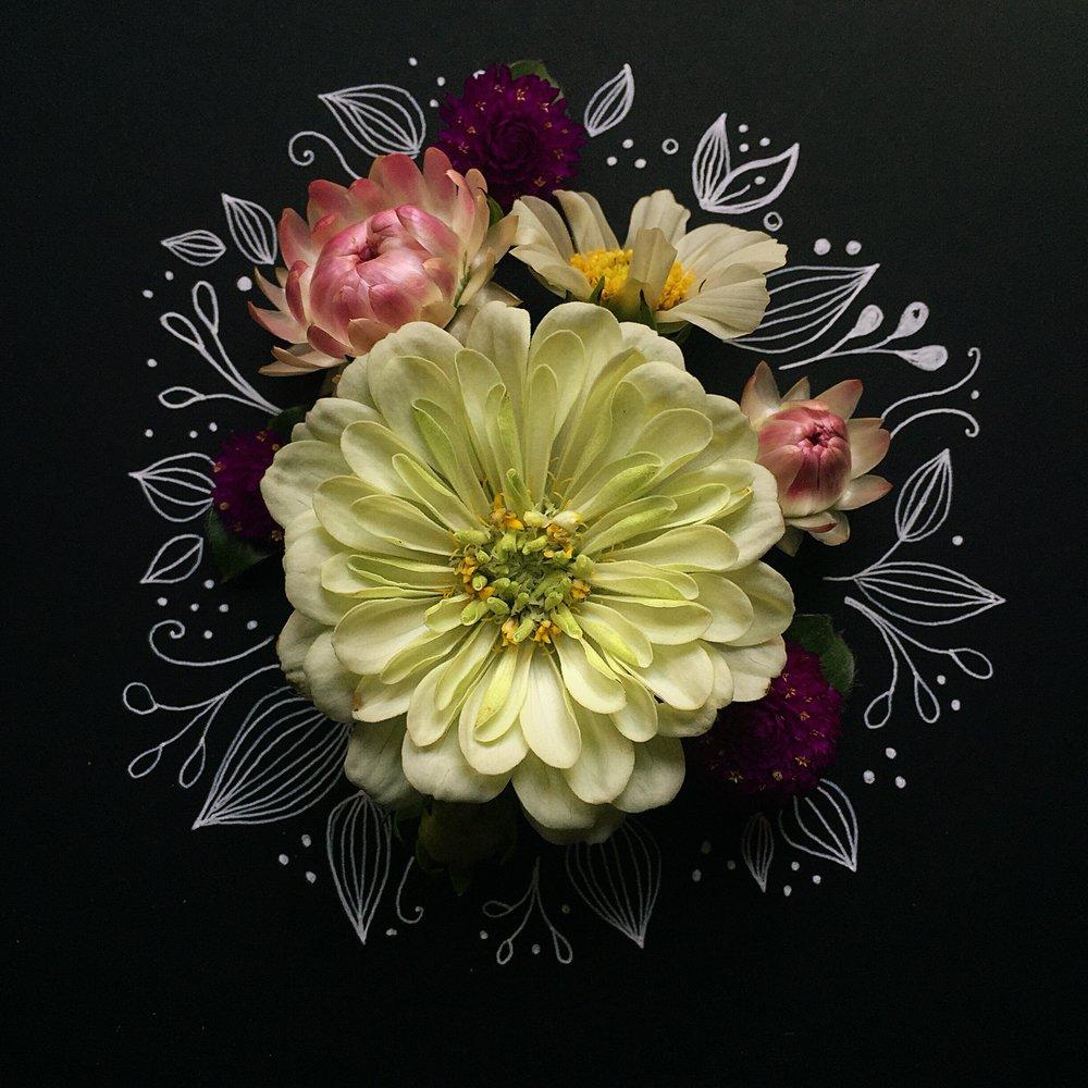 KathrynCole_Flowersandillustration.jpg