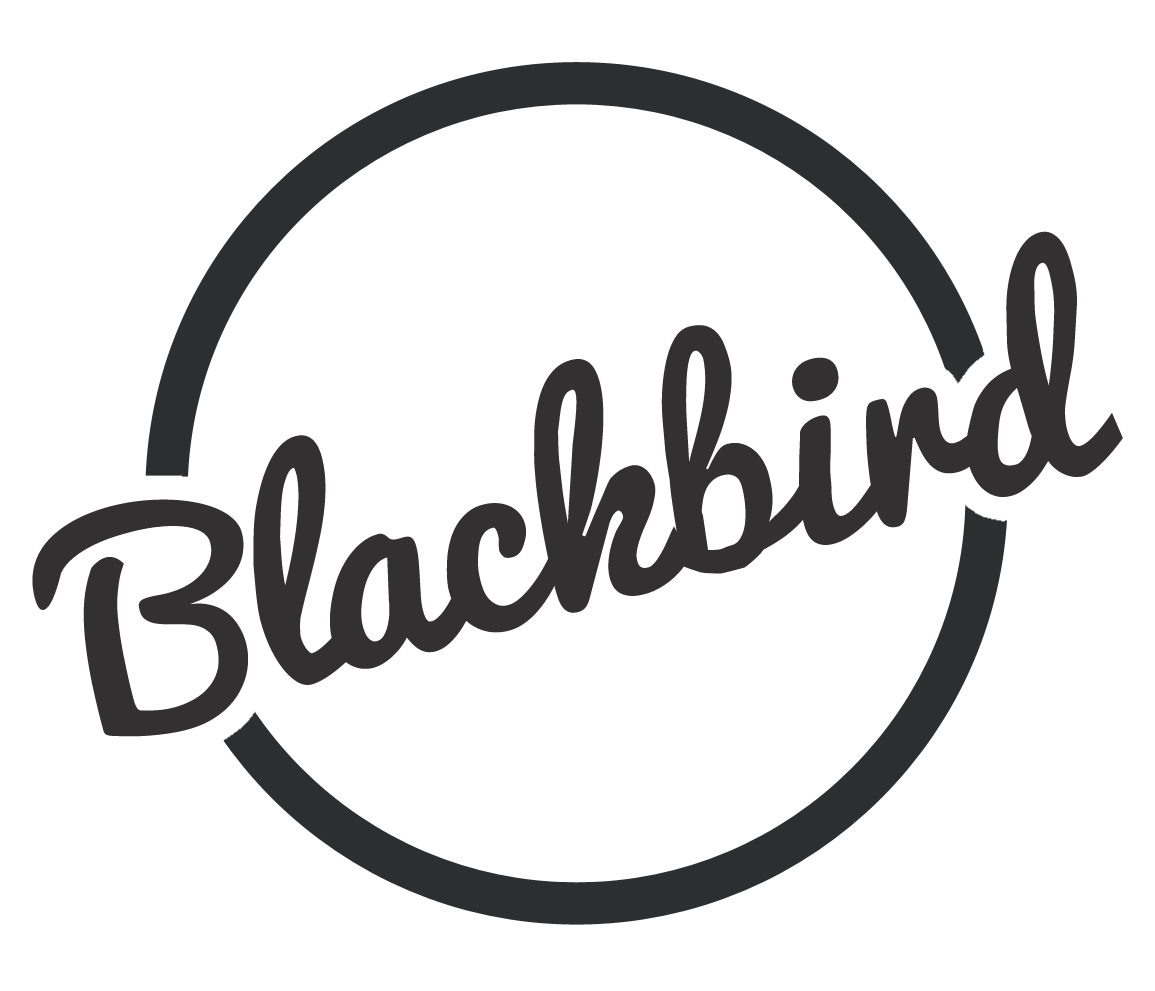 Blackbird - Surrey Function Band, Live Music for Weddings & Parties