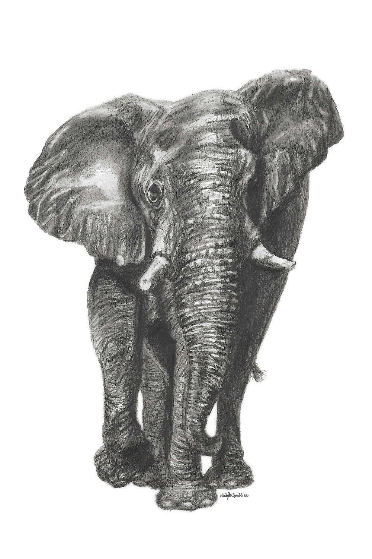 Graphite_Elephant.jpg