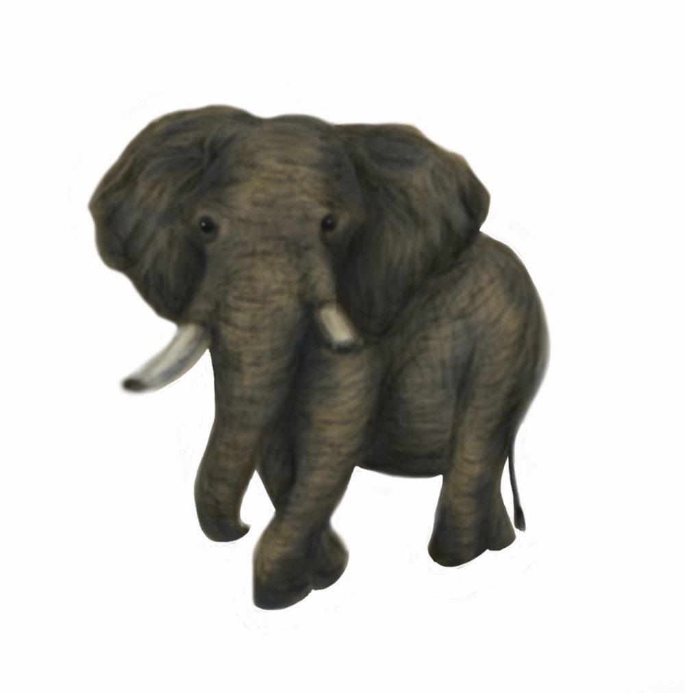 Elephant_PS_Brush1.jpg