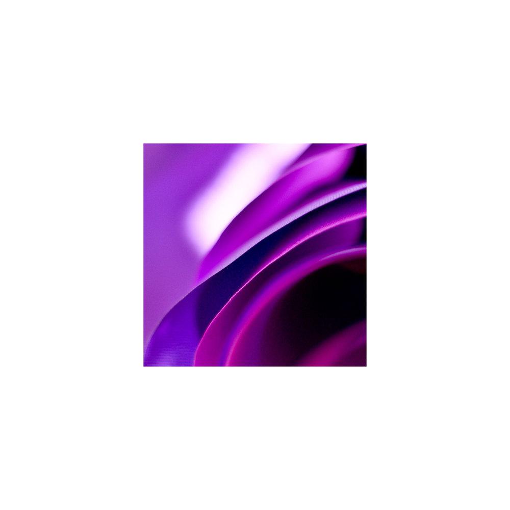 abstracted flower singles.jpg