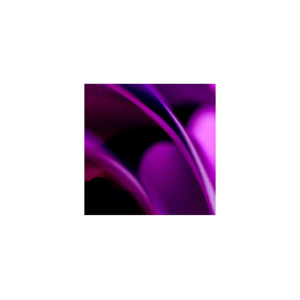 abstracted flower singles4.jpg