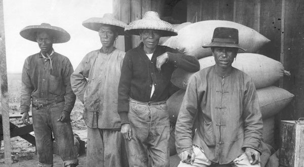 Chinese Immigrants working on the railroad