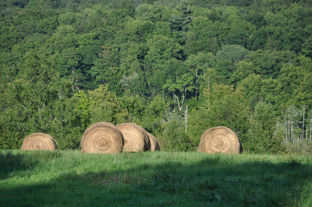 Hay Baling Operation on Neighbor's Property