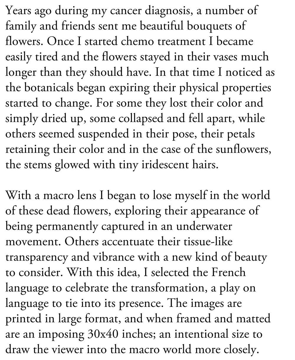 Story of Morte D'Une Fleur