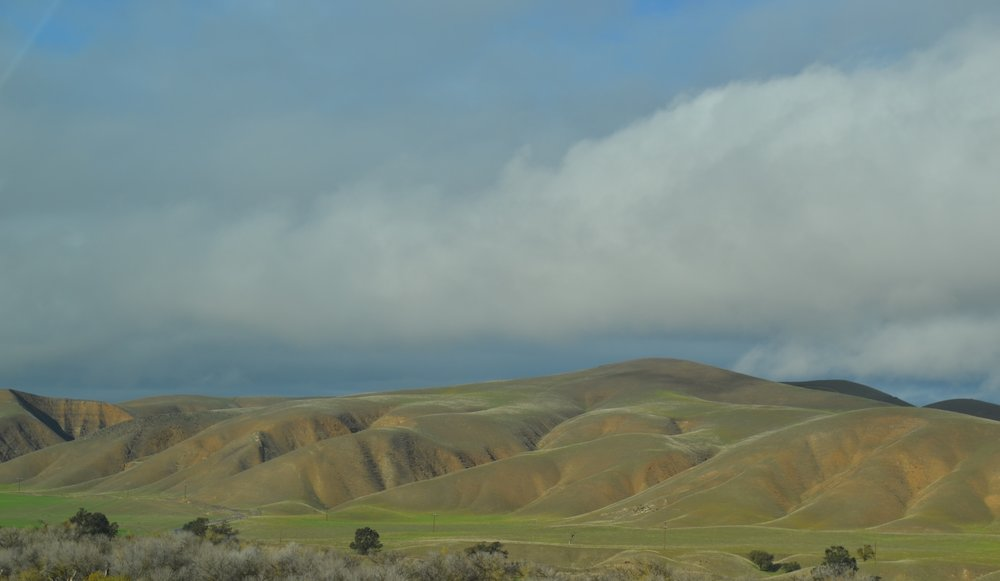 And here are a couple shots from our drive home. Because like I said before, California is pretty great.