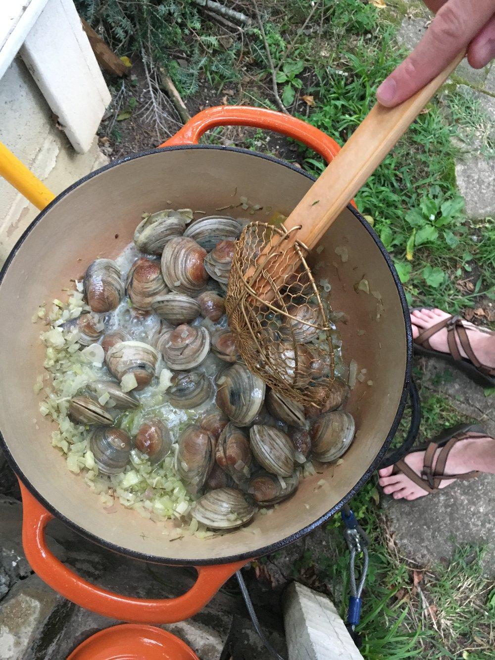 clams-recipe-summer
