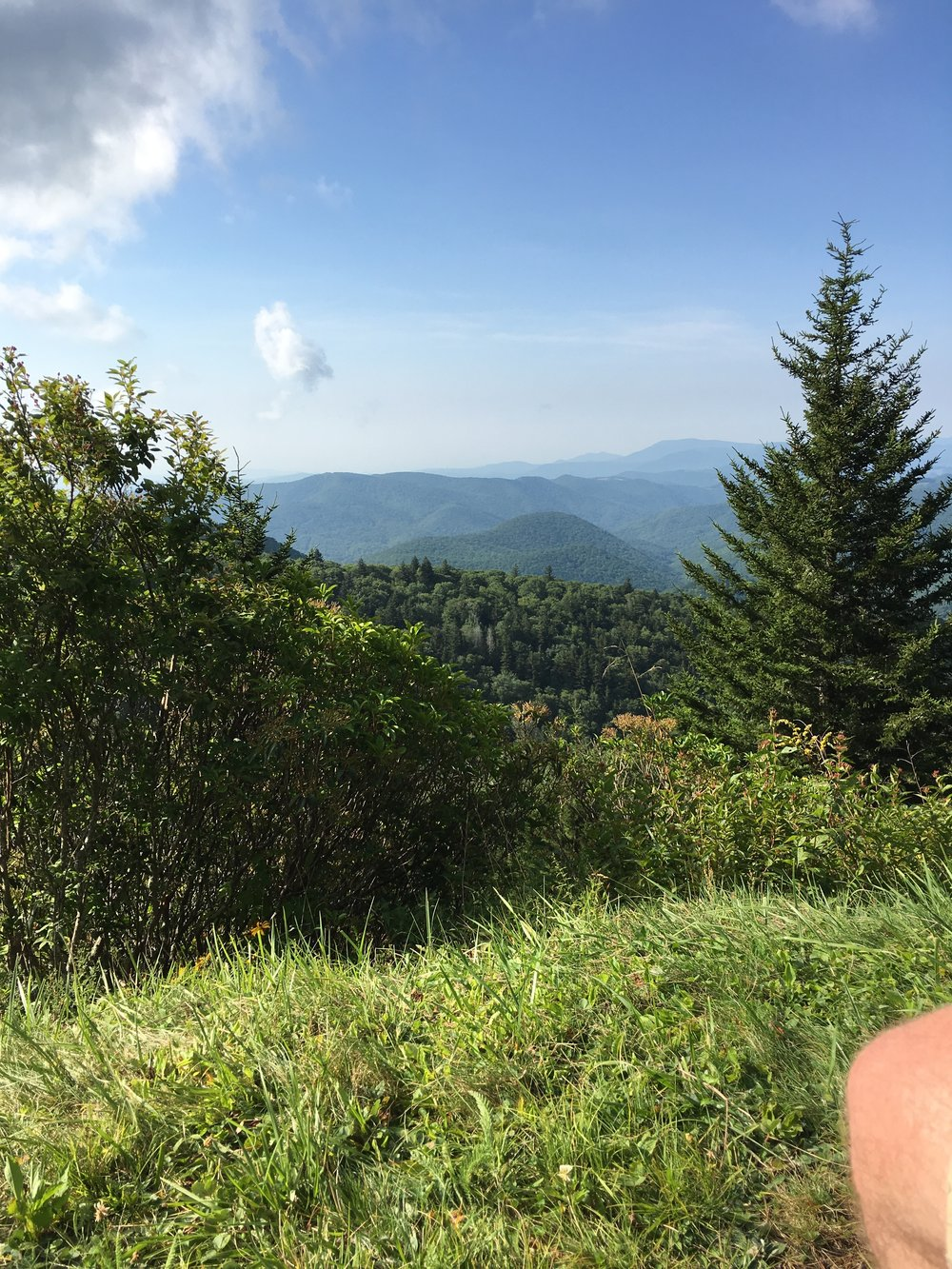 Blue-ridge-parkway-asheville-nc