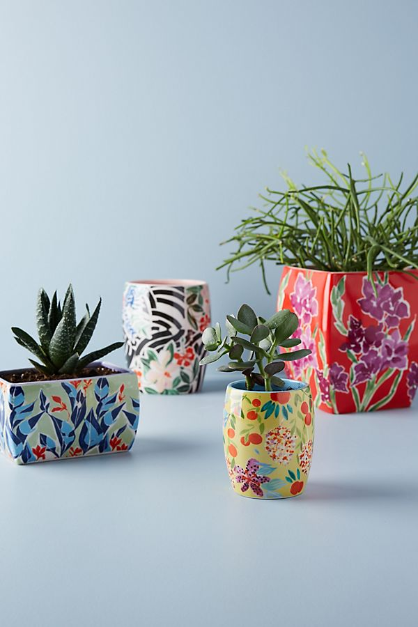 Planter-anthropologie.jpeg