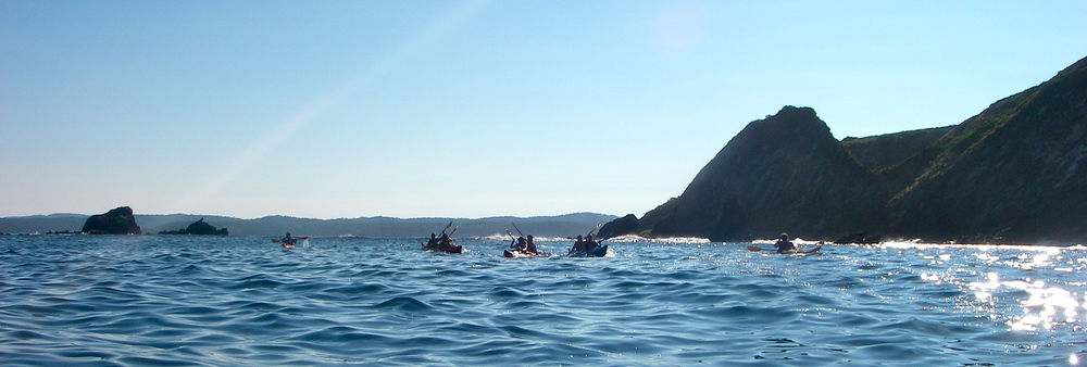 Ocean Sea Kayaking Tour