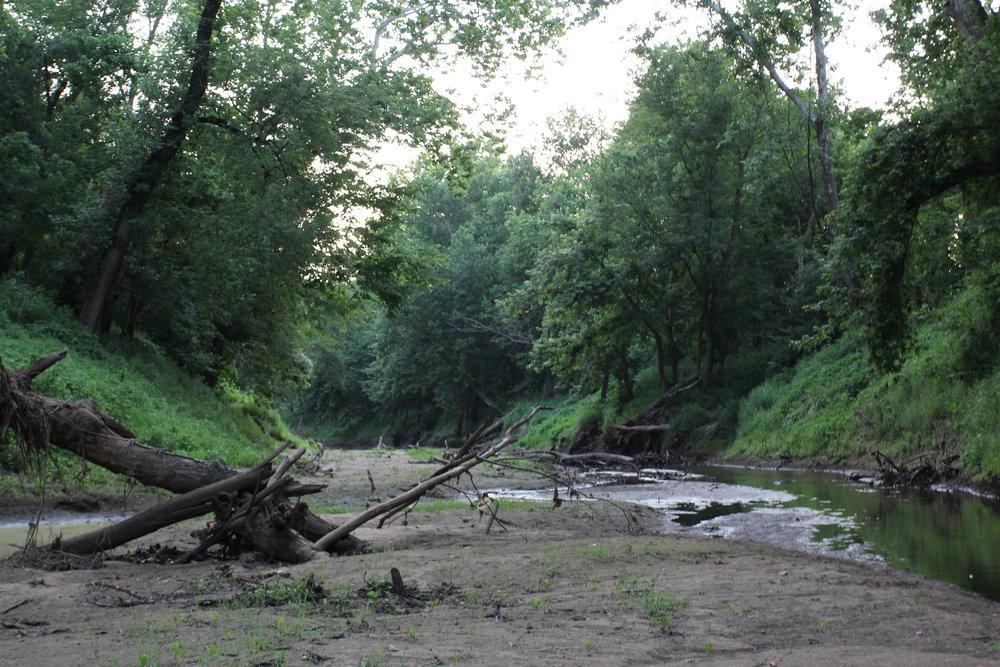 Perche creek behind Breckenridge Park in Columbia, MO