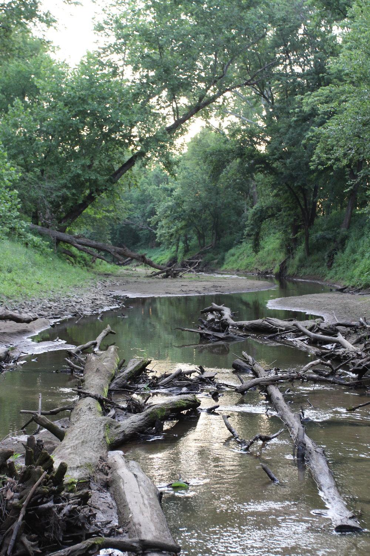 Perche Creek behind Breckenridge Park in Columbia MO