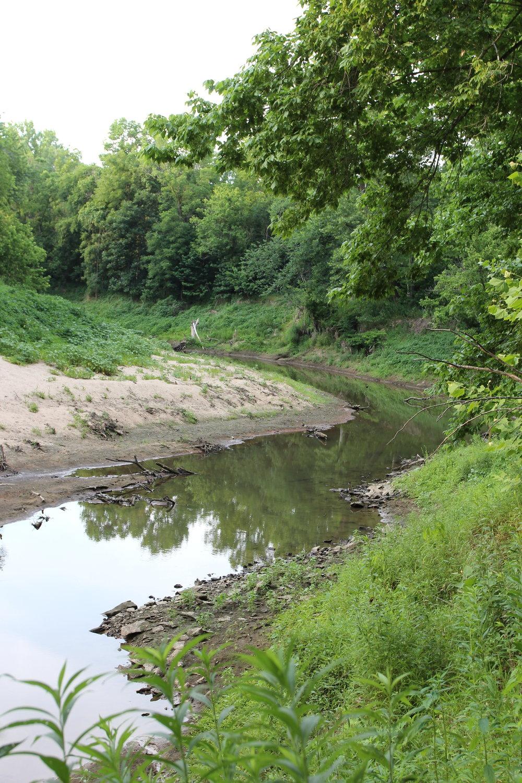Creek behind Breckenridge Park in Mid-Missouri